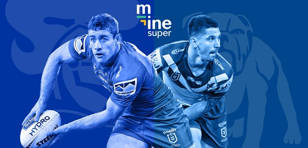 Ultimate Guide: Barnett & Mata'utia in, Dogs named 1-17