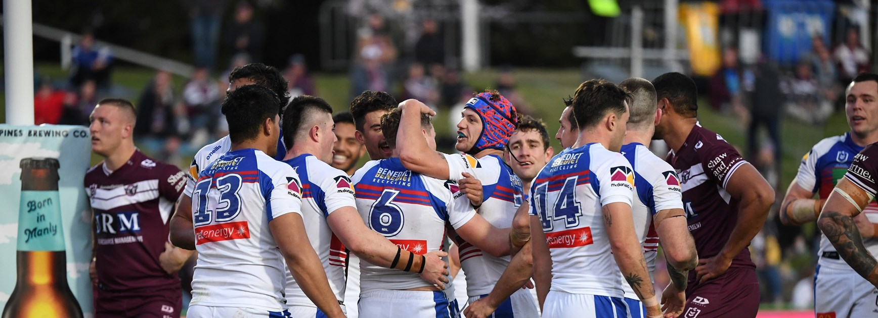 Gutsy Knights too good for Sea Eagles